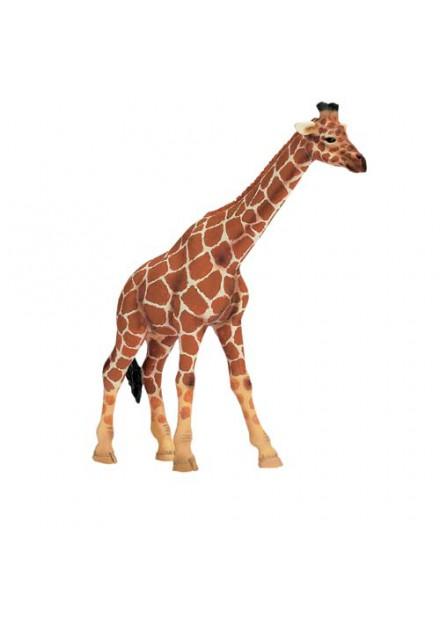 Schleich Giraffe Wijfje 14320