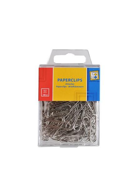 Paperclips 100 stuks zilver